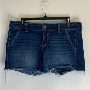 American Eagle Shorts Size 10